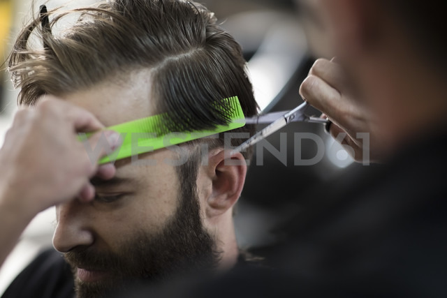 Barber combing and cutting hair of a customer - ZEF009201