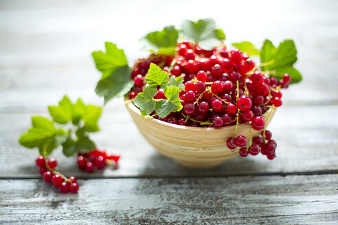 Bowl of red currants on wood - MAEF011924