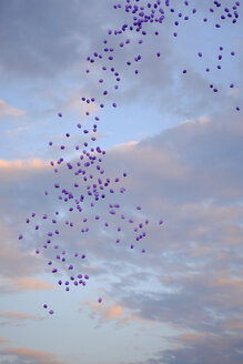 Balloons in the sky - HLF000986
