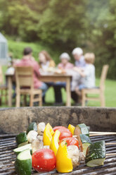 Vegetable skewers on barbecue grill with family in background - RBF004777