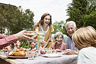 Happy extended family dining in garden - RBF004780