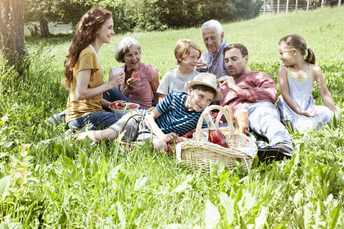 Extended family having a picnic in meadow - RBF004783