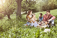 Family having a picnic in meadow - RBF004786