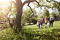Extended family walking with picnic basket in meadow - RBF004789