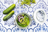 Preserving jar of gherkins and cucumbers - LVF005192