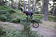 Mountainbiker riding downhill on forest path doing a trick - ABZF000894