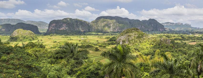 Cuba, Pinar del Rio, Sierra de los Organos, Valle de Vinales - MABF000374