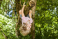 Little boy climbing on a tree in the forest - TCF005036