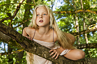 Portrait of blond little girl climbing on a tree - TCF005039