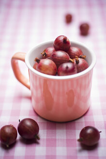 Red gooseberries in a cup - CZF000263