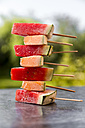 Stack of watermelon and rockmelon popsicles - SARF002841