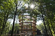 Germany, Upper Franconia, Ebrach, Viewing tower, canopy walk - SIEF007074