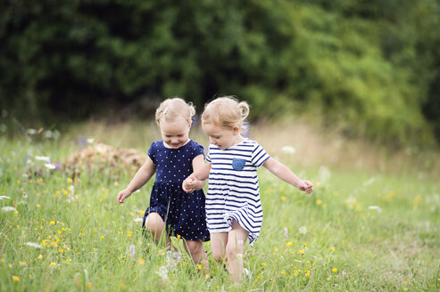 Two little sisters running hand in hand on a meadow - HAPF000692