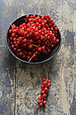Bowl of red currants on wood - ODF001424