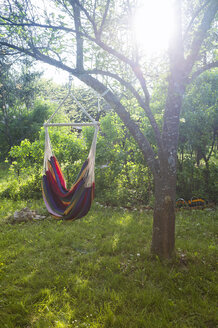 Hammock in backlight - TKF000443