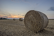 Germany, Lower Saxony, straw bales on field at sunset - PVCF000884