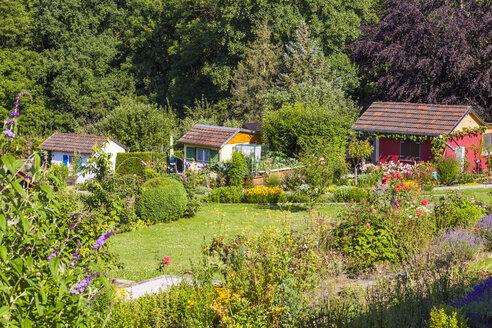 Germany, Esslingen, garden allotments with summer houses - WDF003713