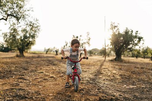 Little boy with children's bike on a field - JRFF000818