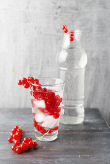 Water with ice cubes, red currants, flavoured - MYF001735