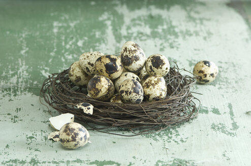 Easter nest of quail eggs - ASF005977