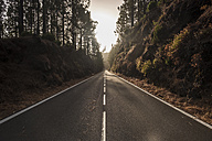 Spain, Tenerifa, empty road, forest - SIPF000784