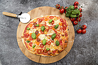 Vegetarian pizza with mozzarella and tomatoes - SARF002853