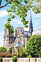 France, Paris, Notre-Dame de Paris surrounded by trees - GEMF000975