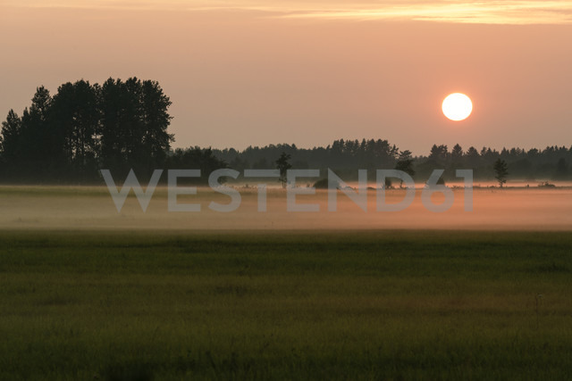 Estonia, Palmse, Lahemaa National Park at sunset - CSTF001202
