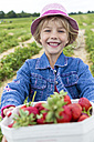 Portrait of happy little girl holding box of strawberries on a strawberry field - JFEF000811