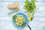 Melon salad, yellow watermelon, feta, mint and rocket on plate - MAEF011955