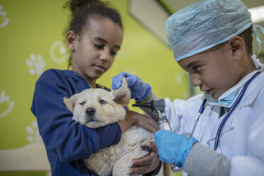 Girl holding labrador puppy while little boy playing veterinarian - ZEF009823