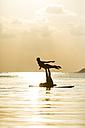 Thailand, couple doing yoga on paddleboard at sunset - SBOF000175