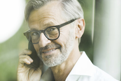 Portrait of smiling man with grey hair and beard on the phone - SBOF000208