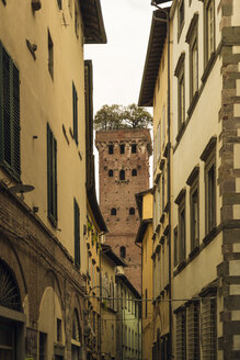 Italy, Lucca, view to Torre Guinigi with house facades in the foreground - OPF000118