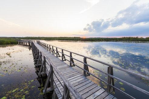Germany, Bad Buchau, Lake Feder, wooden boardwalk in the morning - WDF003733