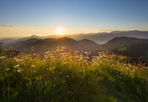 Germany, Bavaria, Allgaeu, Sunrise at the Riederberger Horn - SIEF007111