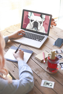 Illustrator drawing a French bulldog with a graphics tablet - RTBF000304