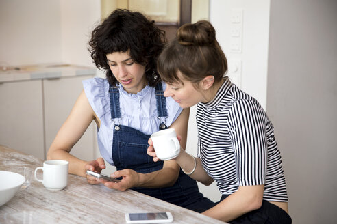 Two friends sitting in the kitchen looking together at smartphone - TSFF000096