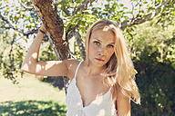 Portrait of young blond woman at apple tree - MFF003097
