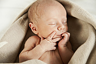 Face of sleeping newborn baby wrapped in blanket - MFF003187