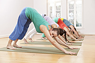 Group of people in yoga studio holding down dog pose - MFF003214