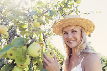 Young woman with straw hat picking apples from tree - MFF003355