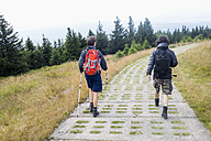 Germany, Harz, Brocken, back view of two friends hiking - NDF000596