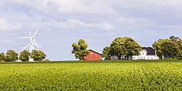 Denmark, Mon Island, field, wind park, barn and residential house - WDF003748