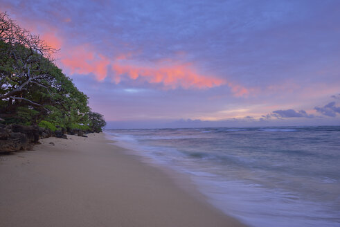 USA, Hawaii, Oahu, sandy beach at sunrise - RUEF001759