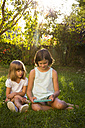 Two little sisters sitting on a meadow looking at tablet - LVF005277