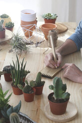 Cactus collector taking notes - RTBF00354