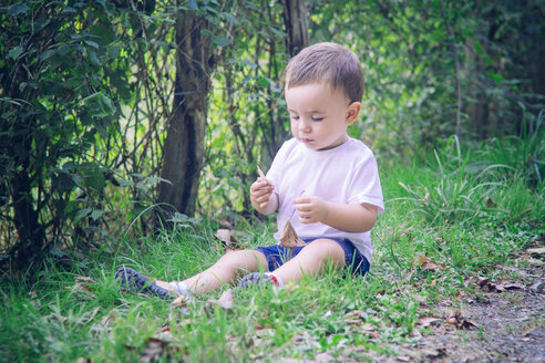 Baby boy sitting on the grass playing with leaves - JPSF00015