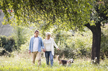 Senior couple on a walk with dog in nature - HAPF00863