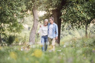 Senior couple on a walk with dog in nature - HAPF00866